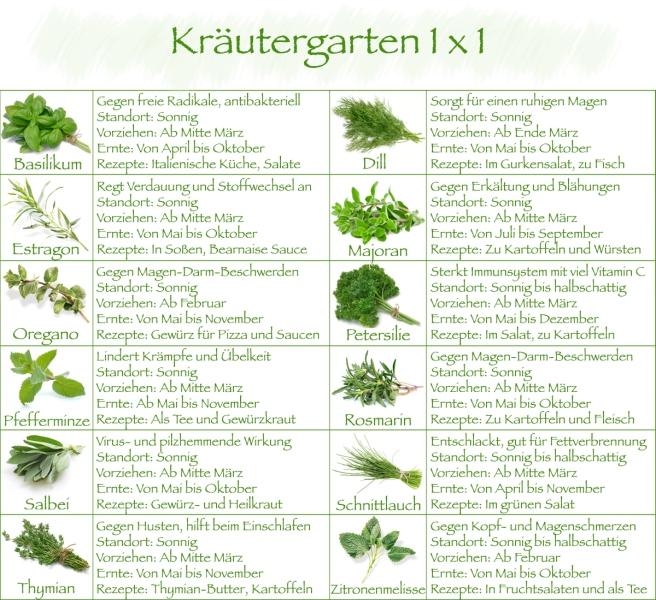kräutergarten 1x1